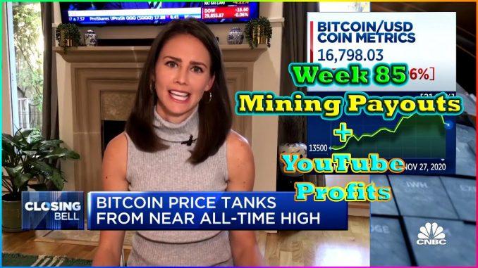 Week 85 | Mining Payouts 11/29/20