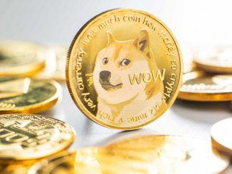 Three Arrows Capital CEO 'Very Bullish' on Dogecoin, Sees No Risk of DOGE Ever Having Any Regulatory Issues
