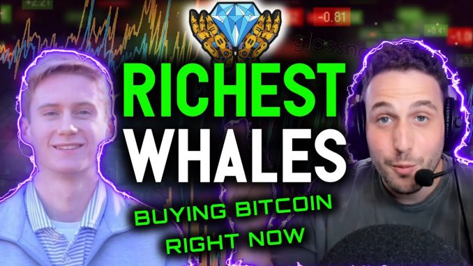 RICHEST BITCOIN WHALES BUYING NOW! On chain data reveals the truth
